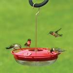 The Backyard Naturalist highly recommends Aspect's Hummzinger Highview feeder.