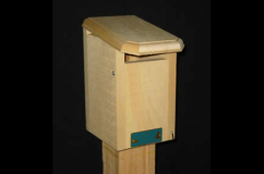 Bluebird Slot Nest Box