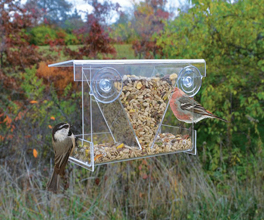 The Backyard Naturalist has the Clear View Hopper Window Feeder in stock.