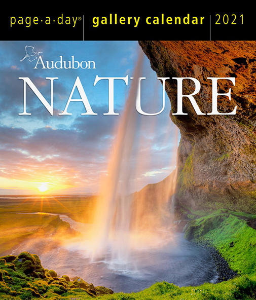 The Backyard Naturalist has Audubon's 365 Page-A-Day Nature Calendar 2021 in stock!