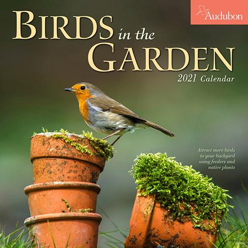 The Backyard Naturalist has the Audubon Society Birds in the Garden Wall Calendar 2021