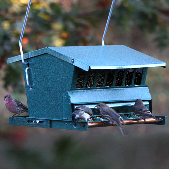 The Backyard Naturalist recommends the Squirrel Proof/Large Bird Resistant Seed Feeder made by Woodlink, has large seed capacity and adjustable weight limit for heavier birds.