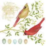 The Backyard Naturalist has Alice's Cottage new Spring 2021 Collection, including 'Cardinals and Eggs'.