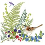The Backyard Naturalist has Alice's Cottage new Spring 2021 Collection, including 'Sparrow and Ferns'.