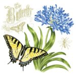 The Backyard Naturalist has Alice's Cottage new Spring 2021 Collection, including 'The Butterfly'.