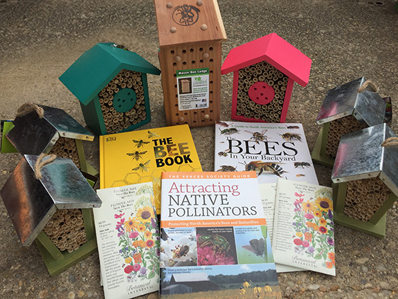 Support our pollinators! The Backyard Naturalist has bee houses, Mason bee lodges, books about bees, seeds for growing flowers that attract bees, butterflies and hummingbirds, and much more in the store.