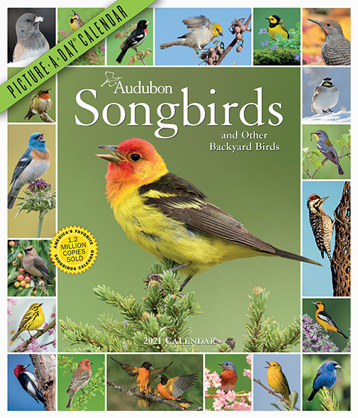 Audubon Songbirds and Other Backyard Birds 365 Picture-A-Day 2021 Calendar is here!