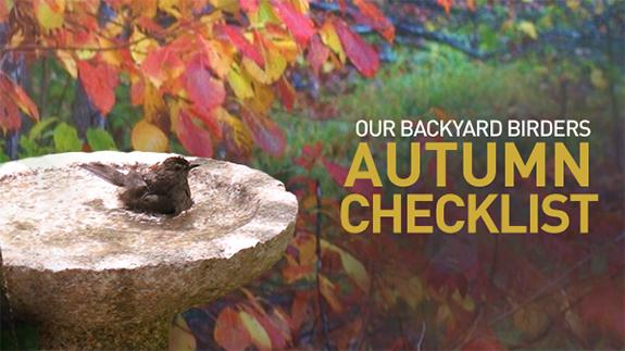 The Backyard Naturalist's 2018 Autumn Checklist for Backyard Birders