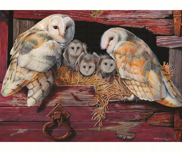 TheBYN has 1000 piece family jigsaw puzzles, including 'Barn Owls'.
