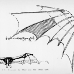Sketch study of bat wings made by Leonardo Da Vinci. Design inspiration for his flying machines.