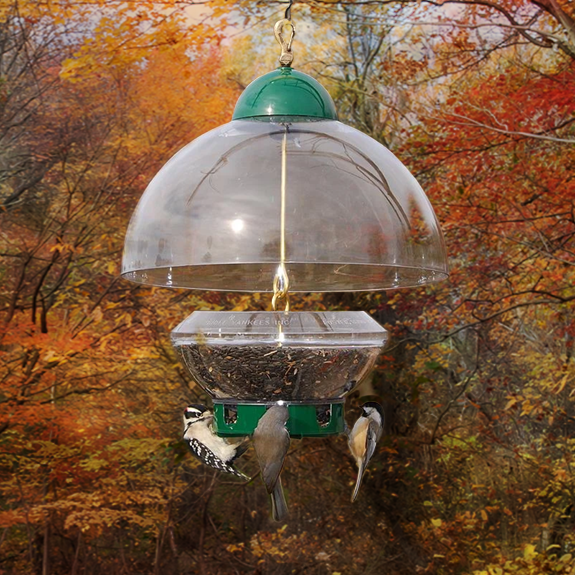 The Backyard Naturalist recommends the Big Top Squirrel Resistant Feeder with Adjustable Dome.