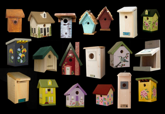The Backyard Naturalist has a HUGE selection of bird houses and nest boxes. All are anatomically correct and species appropriate. Ranging from seriously practical to whimsical.