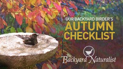 The Backyard Naturalist's Autumn 2021 Checklist for Backyard Birding.