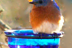 Blue Glass Feeder Dish with Step-In Pole
