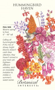 Annuals, biennials and perennials. Your garden haven for hummingbirds will not only attract and provide nectar for the tiny, bright creatures, but also present you with a glorious array of vivid floral colors that will last spring to fall for your enjoyment as well.