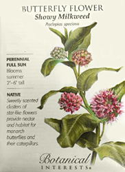 The BYN's Butterfly Flower Showy Milkweed seeds
