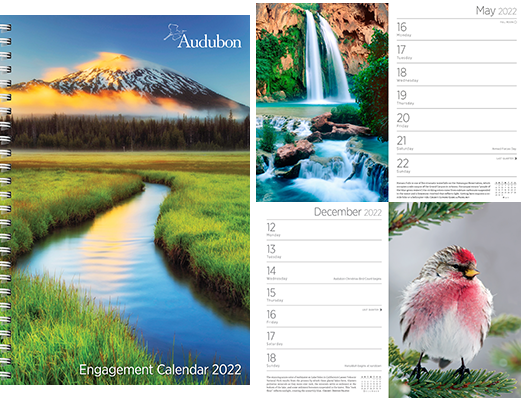 2022 Audubon Engagement Calendars are in stock at The Backyard Naturalist, Olney Maryland.