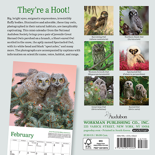 2022 Calendars are in stock at The Backyard Naturalist! Pictured, one of our favorites: Little Owls mini calendar by Audubon. (back)