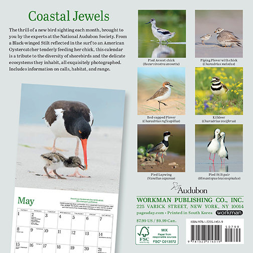 2022 Calendars are in stock at The Backyard Naturalist! Pictured, one of our favorites: Shorebirds mini calendar by Audubon. (back)