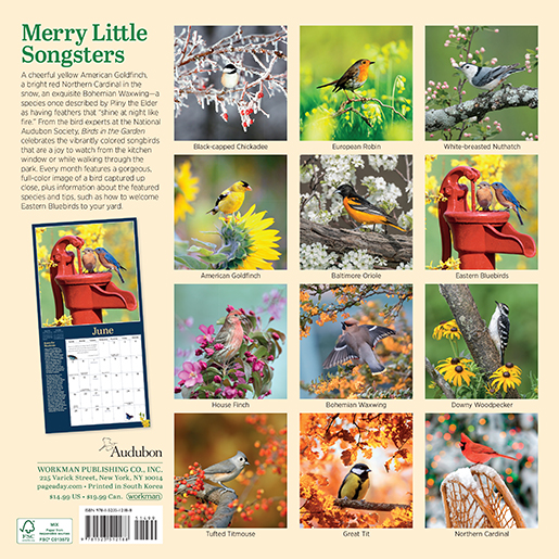 2022 Calendars are in stock at The Backyard Naturalist! Pictured, one of our favorites: Birds In The Garden mini calendar by Audubon. (back)