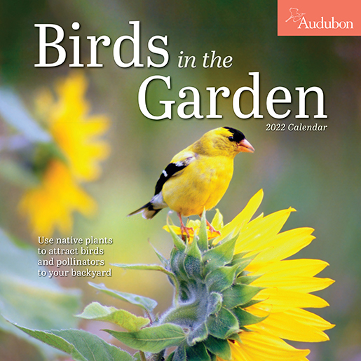 2022 Calendars are in stock at The Backyard Naturalist! Pictured, one of our favorites: Birds In The Garden mini calendar by Audubon. (front)