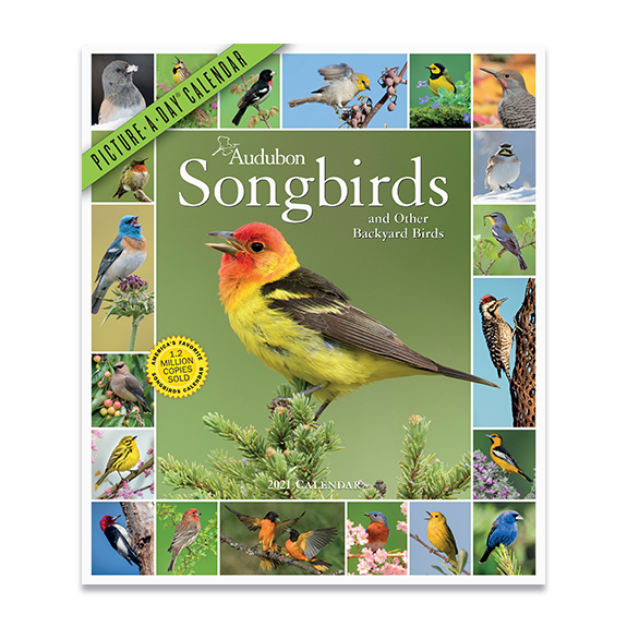 The Backyard Naturalist has 2020 Audubon Songbirds 365 Picture-A-Day Calendar in stock, along with other nature themed calendars