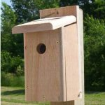 The Backyard Naturalist stocks biologically species correct bird houses in a variety of styles, like this house designed specifically to attract, protect and support nesting Chickadees.