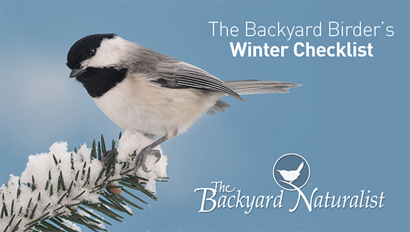 Shelter for Wild Birds During Winter –The Backyard Naturalist's Backyard Birder's Winter Checklist: Bird Houses? Yes! Shelter birds during winter by having your bird houses up, clean and ready.