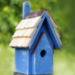 The Backyard Naturalist has many bird house styles available, like this Classic in Blueberry color.