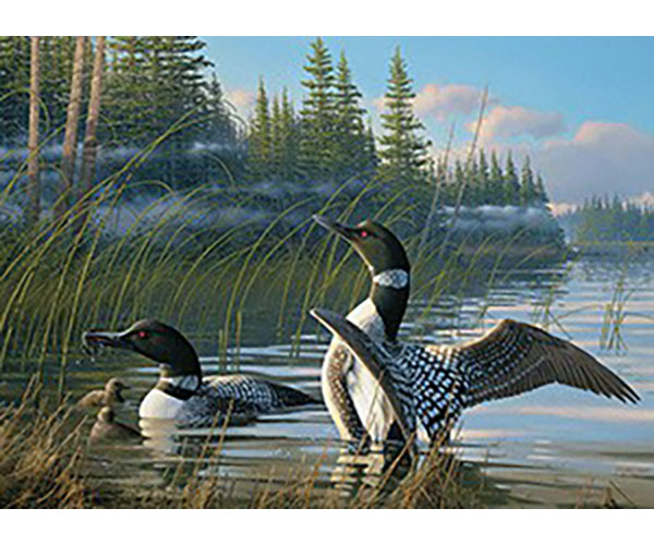 TheBYN has 1000 piece family jigsaw puzzles, including 'Common Loons'.