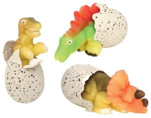 The Backyard Naturalist has Hatchin Grow Dinos in stock. Just add water!
