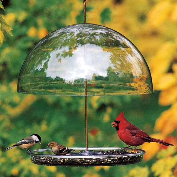 The Backyard Naturalist recommends Droll Yankees Dorothy's Cardinal Feeder with adjustable dome to keep larger birds out.