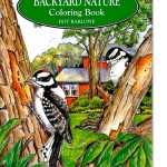 The Backyard Nature Coloring Book for Grown Ups, New at The Backyard Naturalist.