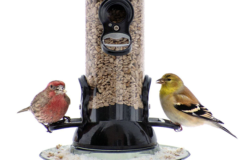 Droll Yankees Onyx Clever Clean and Fill Sunflower and Nyjer (Thistle) Feeders