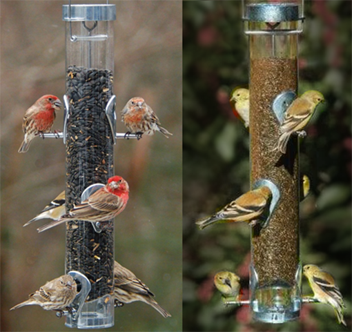 The Backyard Naturalist is a Platinum Dealer of Droll Yankees Classic and Iconic Silver Bird Feeders, including the updated Ring Pull feeders for sunflower and thistle.