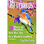 Book cover,  Enjoying Bluebirds More, book written by Julie Zickafoose. Buy it from The Backyard Naturalist store in Olney, Maryland.
