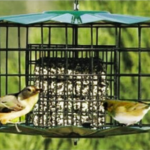 The Backyard Naturalist stocks Erva's poplular Double Suet Cake Squirrel and Starling Proof Feeders.