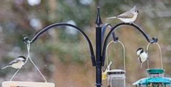 The Backyard Naturalist stocks Erva's tubular feeder poles and hangers. Hang three feeders or flower pots at a time.