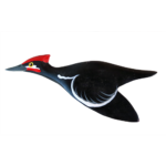 The Backyard Naturalist has Gary Starr's hand carved and painted wild bird ornaments, including Pileated Woodpecker.