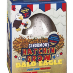The Backyard Naturalist has Ginormous Hatch n' Grow Bald Eagles in stock.