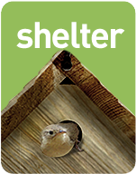 Habitat: The Backyard Naturalist's Guide to Your Backyard Habitat & SHELTER - one of three simple elements.