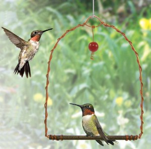 The Hummingbird Swing offers Hummingbirds a place to wait their turns at your nectar feeder!