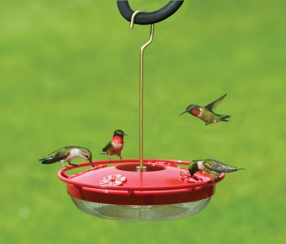The Backyard Naturalist's Most Often Recommended Hummingbird Feeder: The Hummzinger Highview.