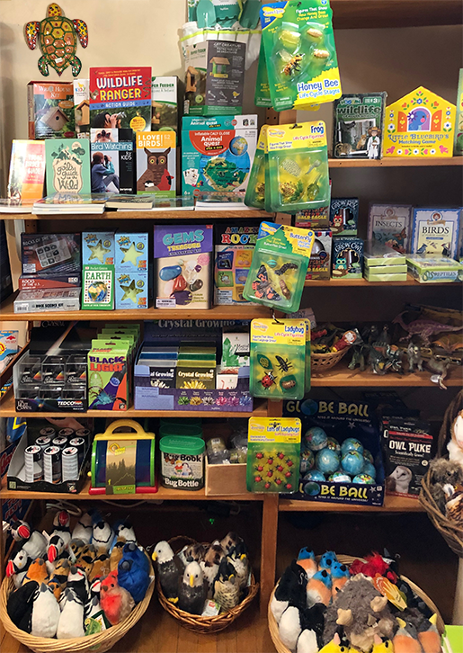 The Backyard Naturalist, in Olney Maryland, has nature-themed projects, kits, games, booksand more for children.