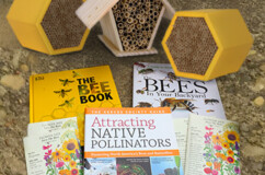 Bee Houses, Books and More