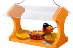 Going Green Recycled Oriole and Bluebird Feeder