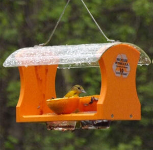 Birds Choice Recycled Oriole Fruit and Jelly Feeders have a clear acrylic roof allowing the birds to see the food, but protects it from the rain.