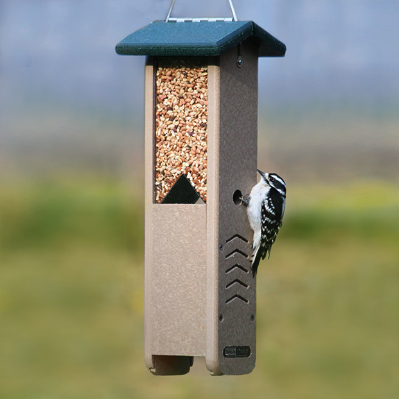 The Backyard Naturalist has Woodpecker feeders, like this one that's perfect for shelled peanuts or a special nutty Woodpecker blend to attract Woodpeckers.
