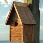 The Backyard Naturalist stocks biologically species correct wild bird houses in a variety of styles, like this one, The Starter Home.