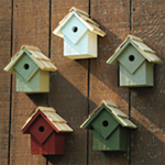 "The Backyard Naturalist has many bird house styles available, like these, ""Summer Homes Collection"" in five colors."
